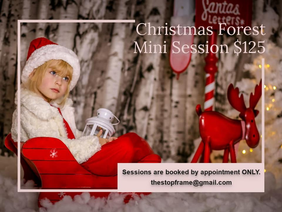 Stop Frame Photography Christmas Picture
