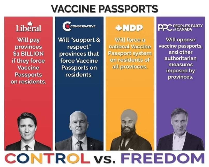 control vera freedom